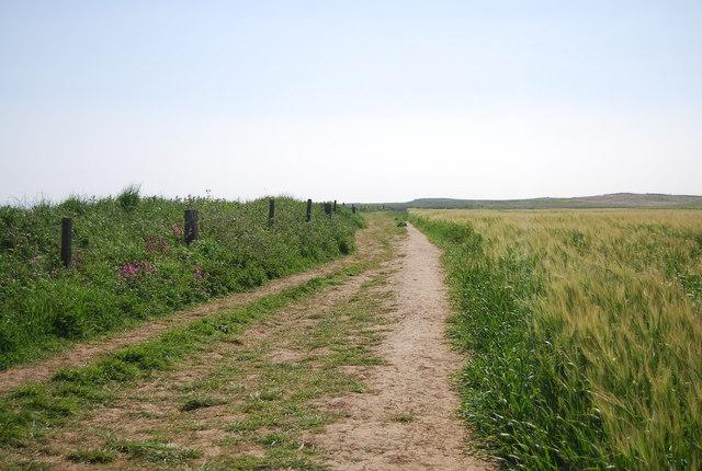 Headland Way, Bempton Cliff
