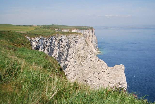 Bempton Cliffs looking westward