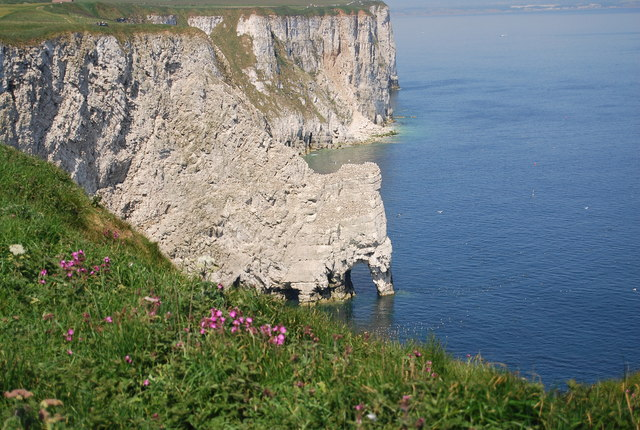 Scale Nab and Bempton Cliffs