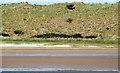 C7836 : Sand dunes near Castlerock by Albert Bridge