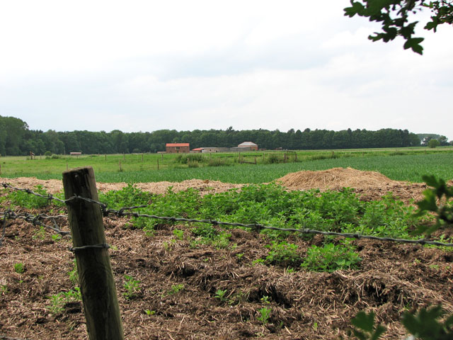 Farm east of Oak Covert, Didlington