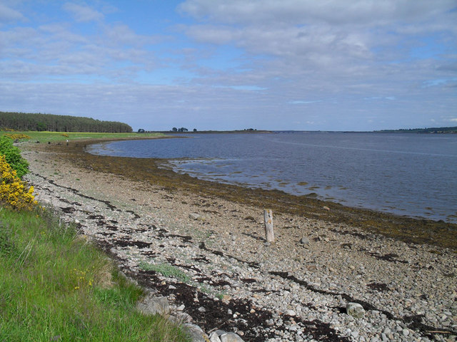 Shingle beach at Newton Point