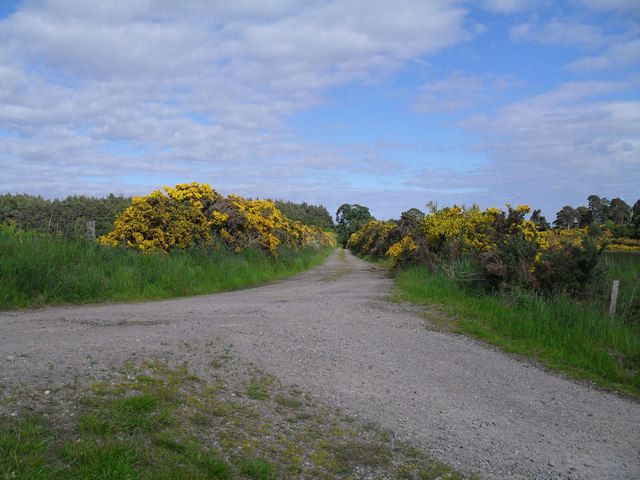 The Road to Pulrossie