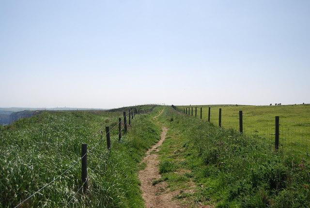 Headland Way to Gull Nook