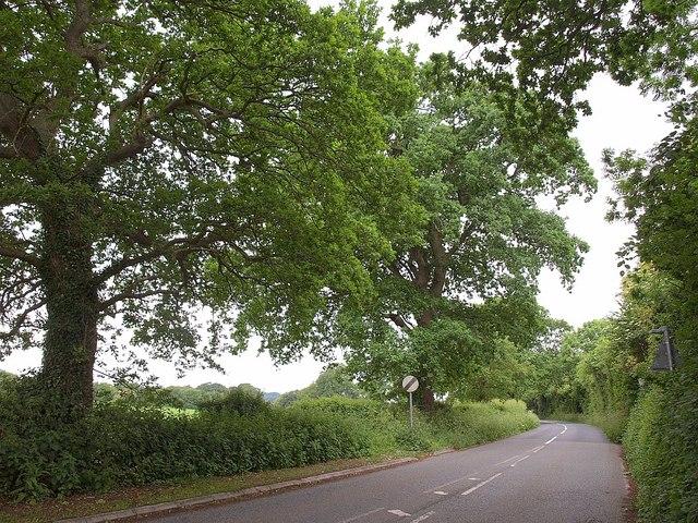New Road, Yeovil