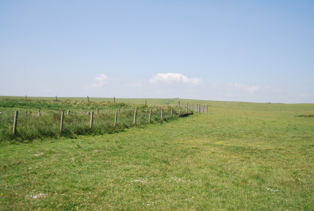 Pasture land by Headland Way