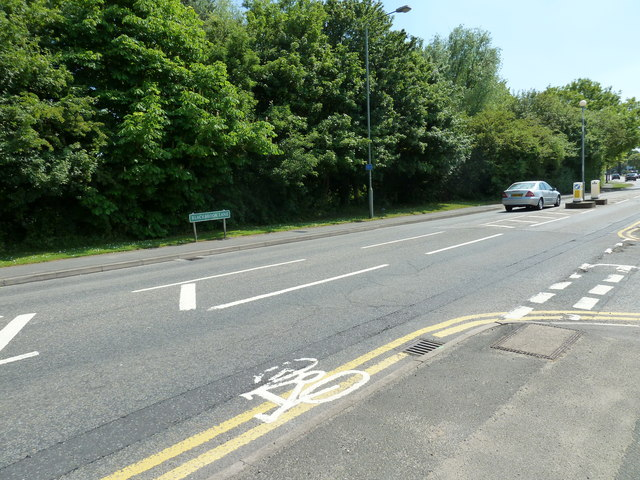 Junction of Blackbrook Lane and Springfield Gardens