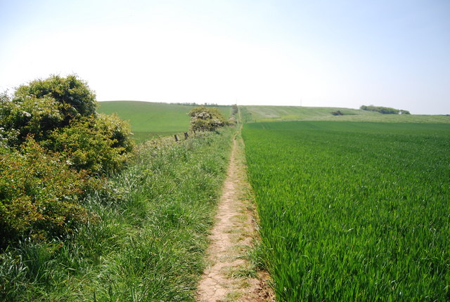 Footpath south to Flamborough