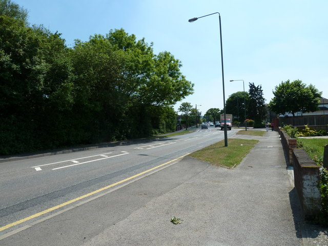 Blackbrook Lane- between Springfield Gardens and Homemead Road