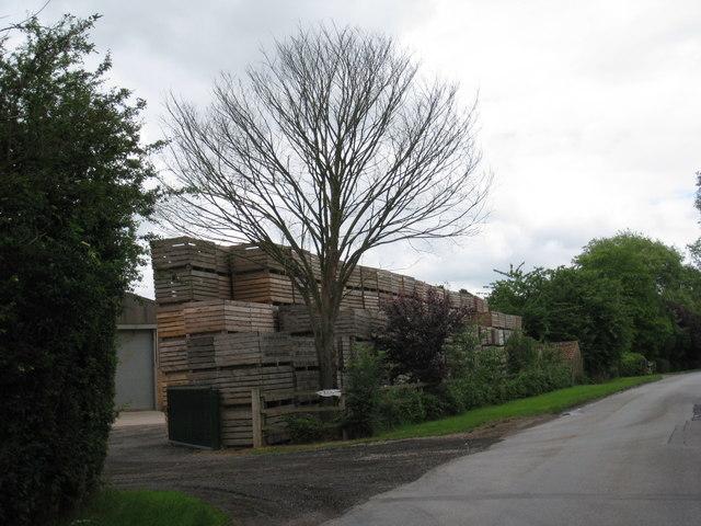 Crates, Beltoft Grange