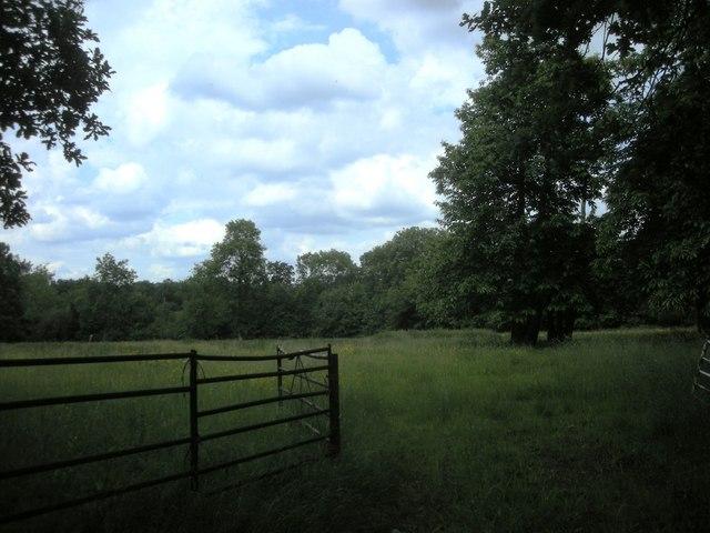 Wappenbury Wood-Nunwood Lane