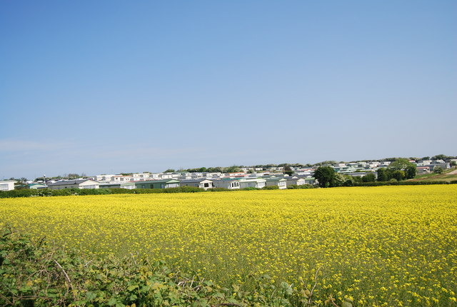Thornwick Holiday Park across the oil seed rape