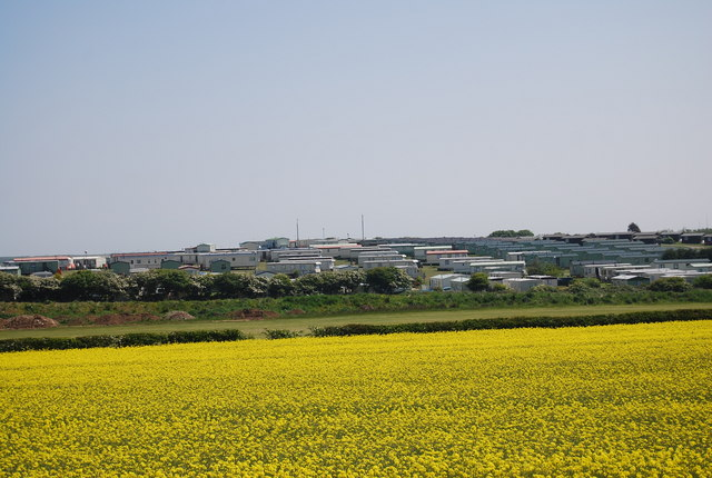 Thornwick Holiday Park across the rapeseed crop