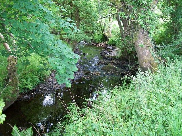 Afon Wen near Plas Gruffydd ap Ifan