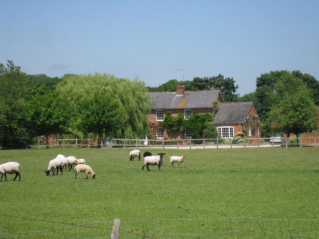 Upper Little Boy Court Farm
