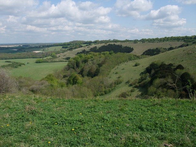 Old Winchester Hill Nature Reserve