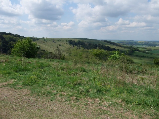 View south-west across the Old Winchester Hill Nature Reserve