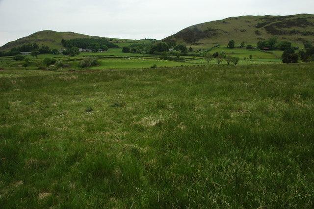 Rough grazing near Cefn Llech