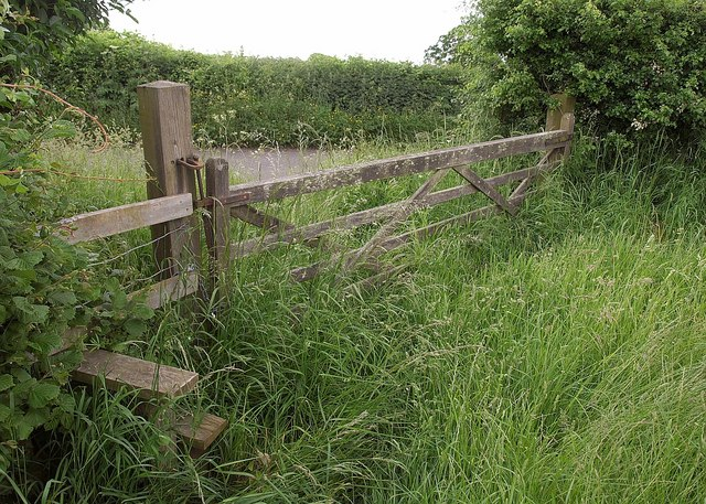 Stile and gate near Odcombe