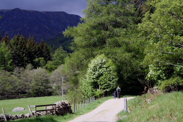 The lane leading to the hills