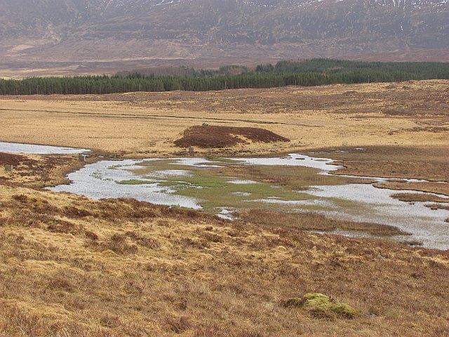 Wetland, Strath Mudale