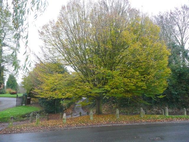 Green Lane, Marchington