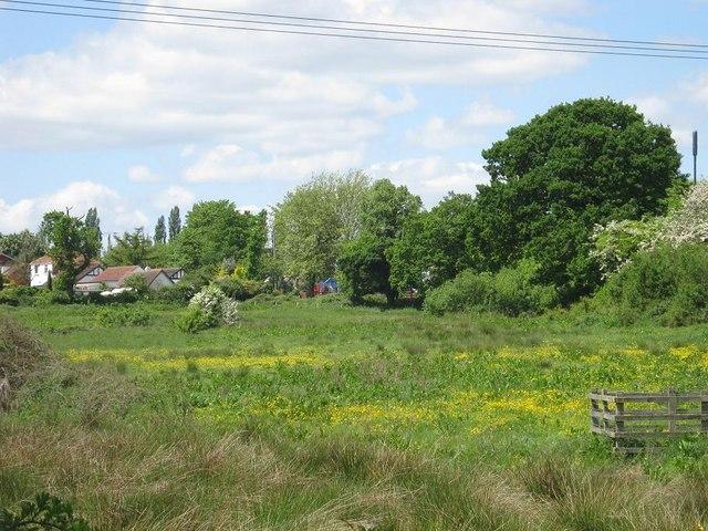 Countryside, Maypole