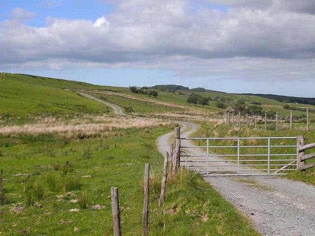 Road to Esgair Hir