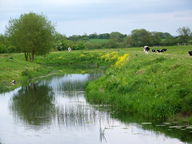 River Yeo (Ivel) near Ilchester