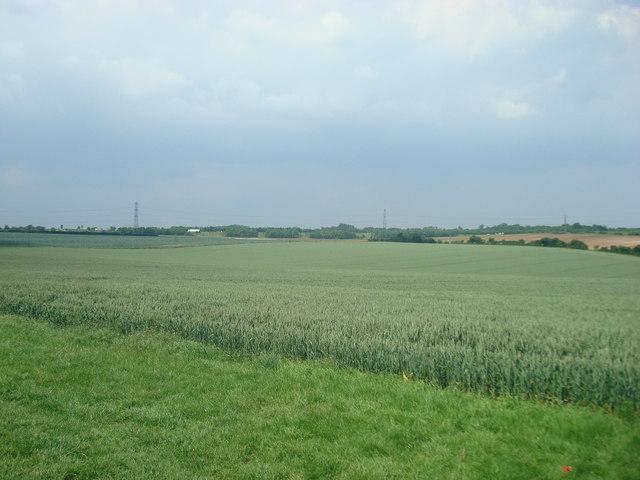 Field near Hulberry