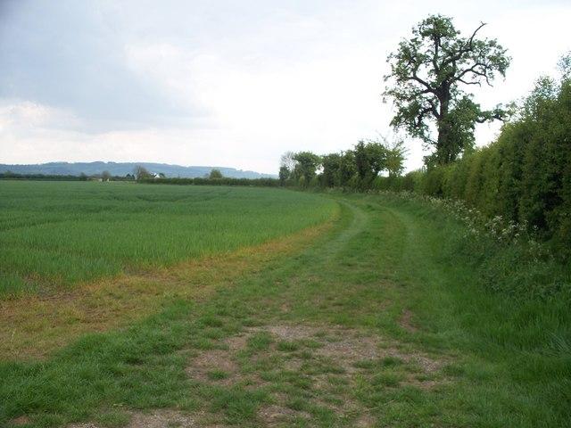 Bridleway to Murcot Turn