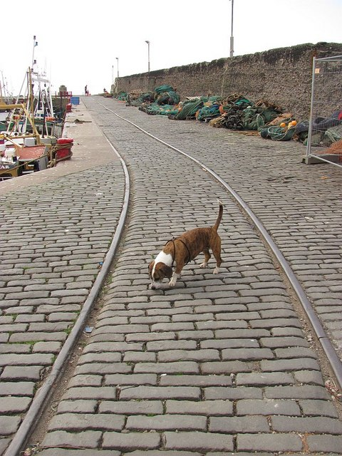 Rails, Port Seton Harbour