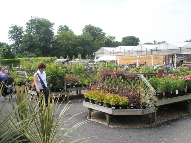 Stansted House Garden Centre (3)