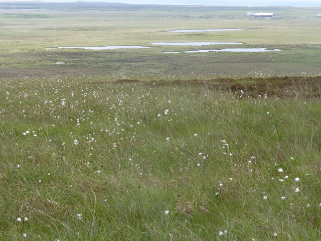 View south-east from Beinn Chùrlaich, Islay