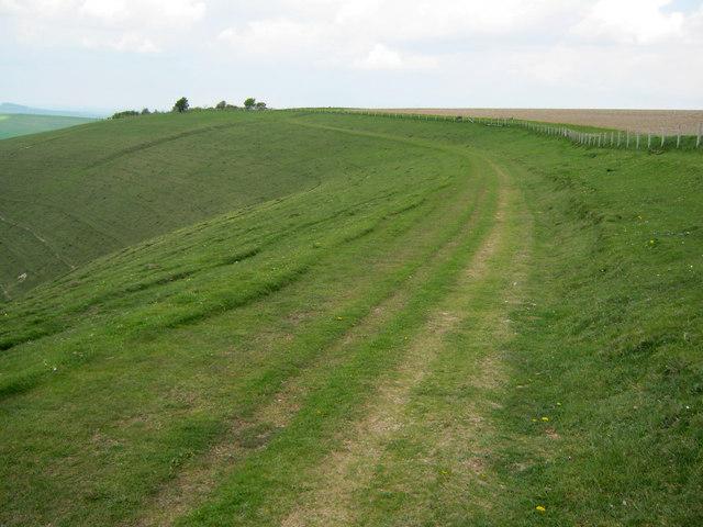 Farm track on Milk Hill