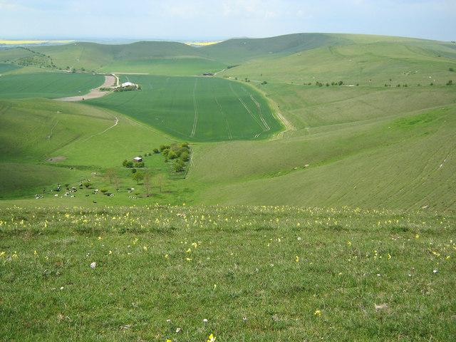 Downland on Milk Hill