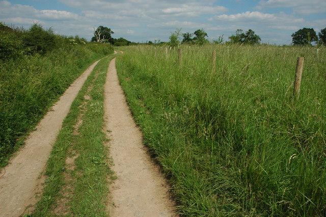 The Arden Way