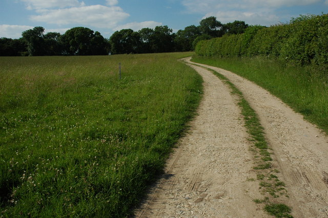 Track to Alne Wood