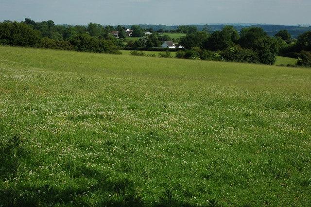 Alne Hills