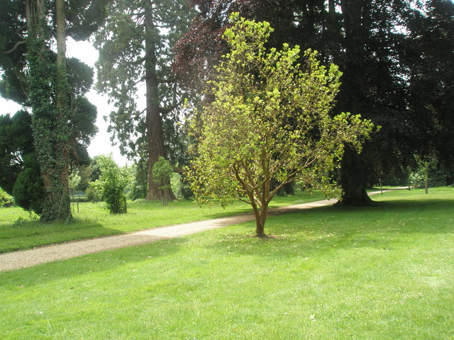 The lovely grounds at Stansted House (4)