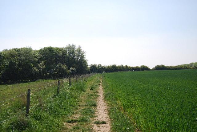 Footpath SW of Flamborough