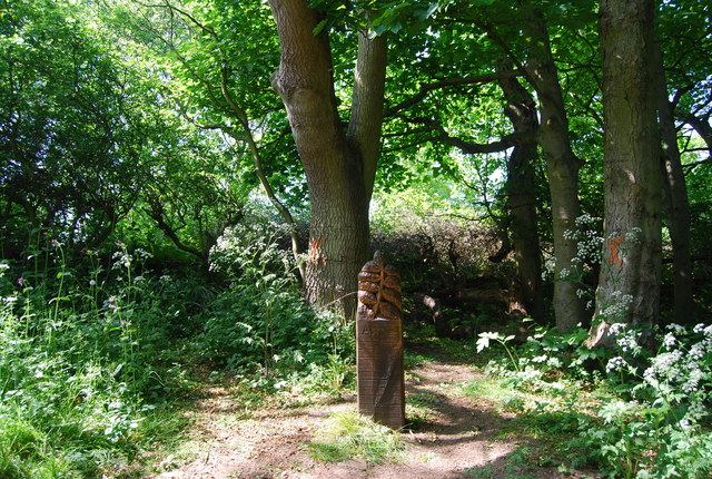 Wooden Carving, Dyke Wood