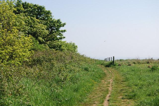 Footpath to the coast