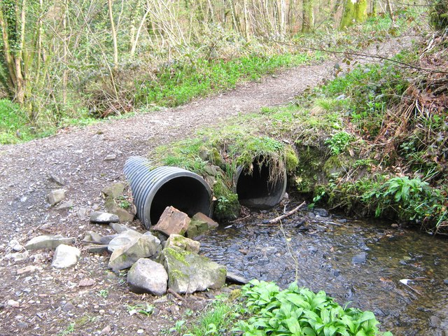 Culvert in Cally Woods