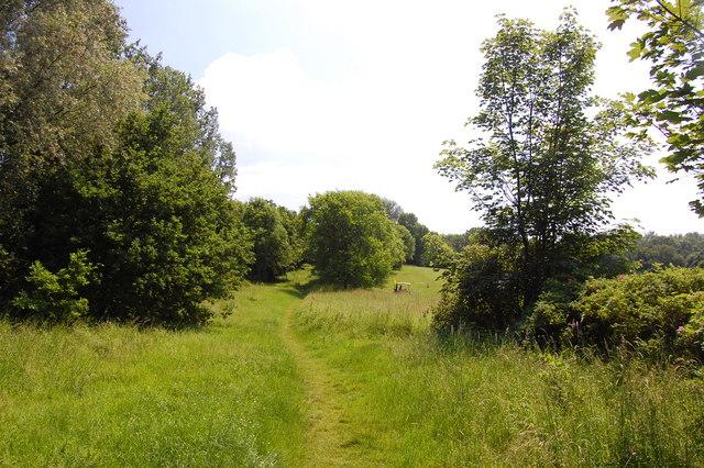 Footpath, Kingswood