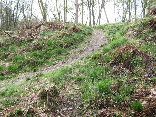 Path to the top of Cally Motte