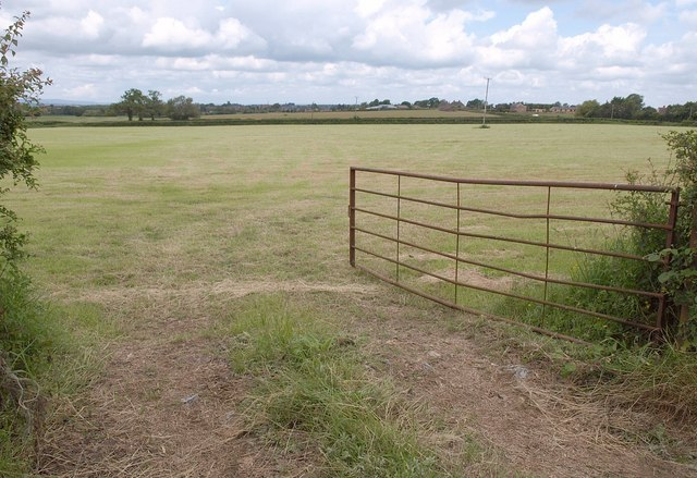 Field at Coles Cross