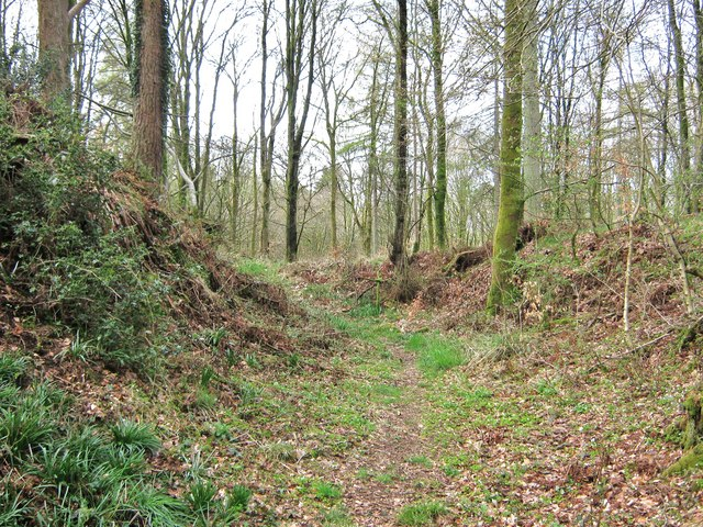 The ditch at Cally Motte