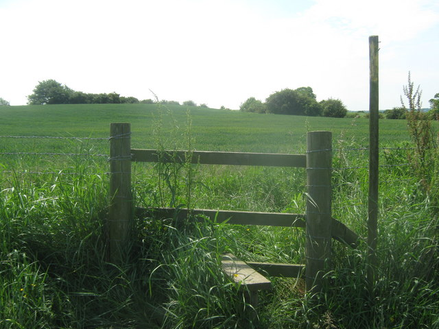 Stile and footpath junction near Hadses Wood
