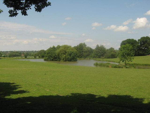Pond near Hornbrook Farm